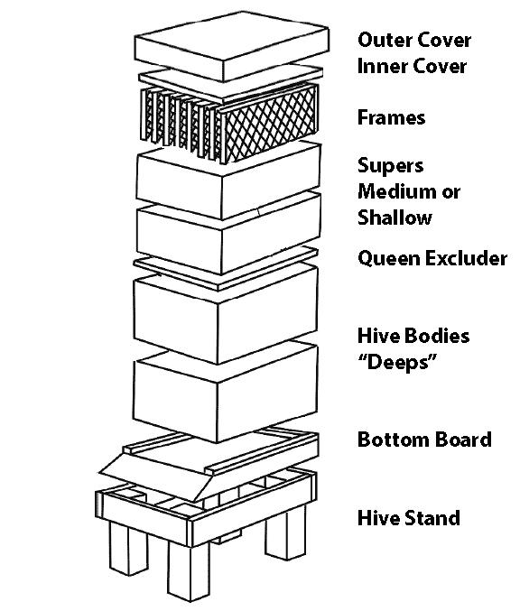 Deep Hive Body – Unassembled