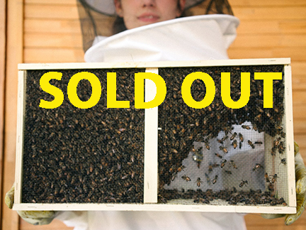 3lb. Package of Honey Bees, 4/5/21 SOLD OUT