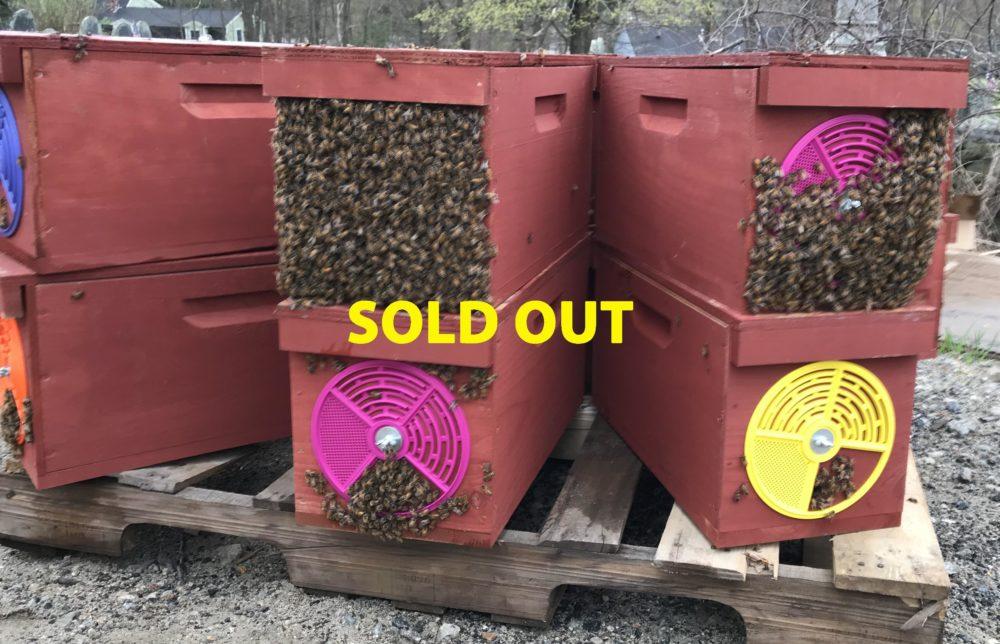 uploads-sold-out-nucs